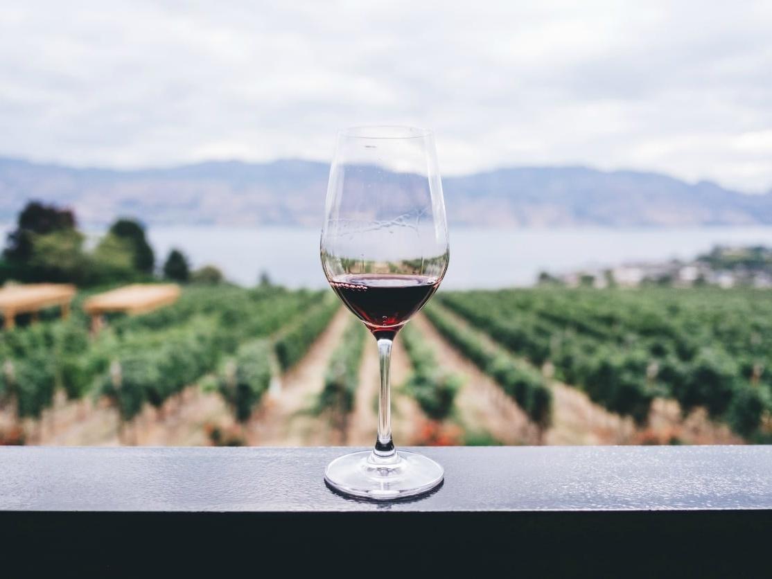 Alto Douro Wine