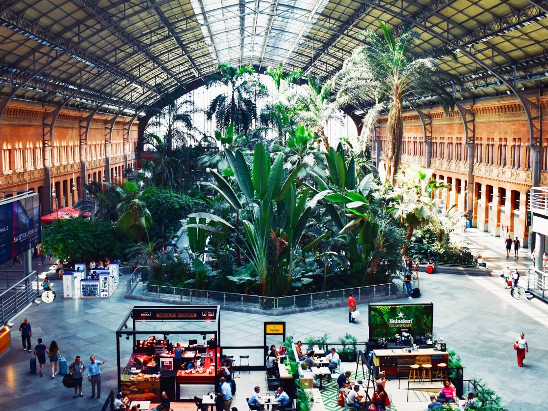 Atocha Station Tropical Garden, Madrid