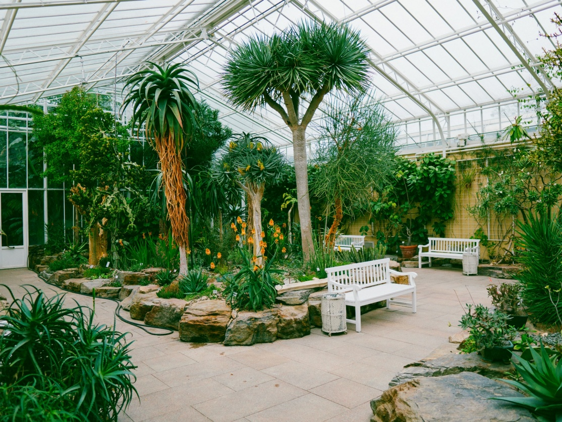 Botanical Garden, Munich